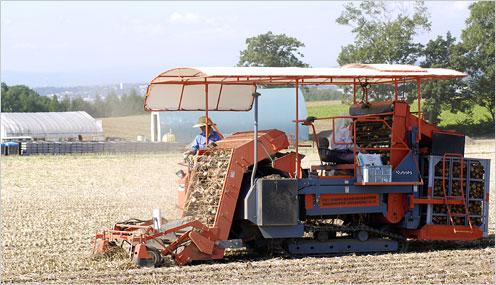 端野町。トラクターでタマネギの収穫を行う